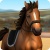 Horse World Showjumping – For all horse fans 2.1.2405 Modding APK Free Download